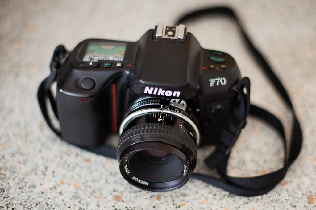 IMG-3931.jpg